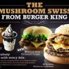 Burger King Free Sundae Promotion