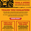 The Lion King Musical: Final 6 Weeks