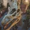 Plaza Singapura now hosting the largest dinosaur exhibit in a mall