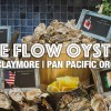 Oysters Occasions Buffet @ Pan Pacific Orchard: Free flow oysters from $68