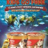 WALL's Ice-Cream and Resorts World Adventure Cove Waterpark Promo