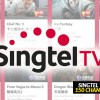 Singtel TV to offer free preview up to 150 channels in Chinese New Year celebration